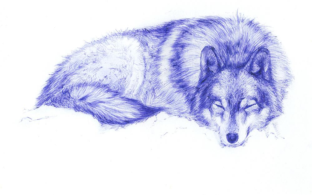 动物插画手绘图片圆珠笔