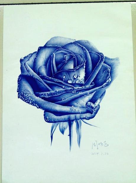 临摹oy的玫瑰.