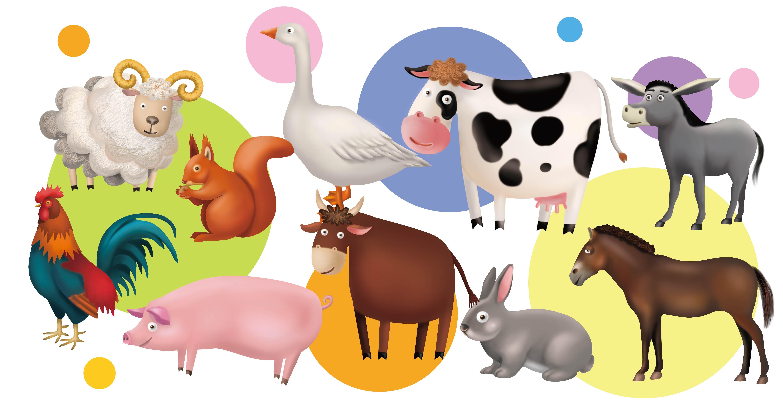 农场小动物