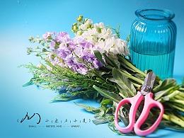 Flower-紫罗兰