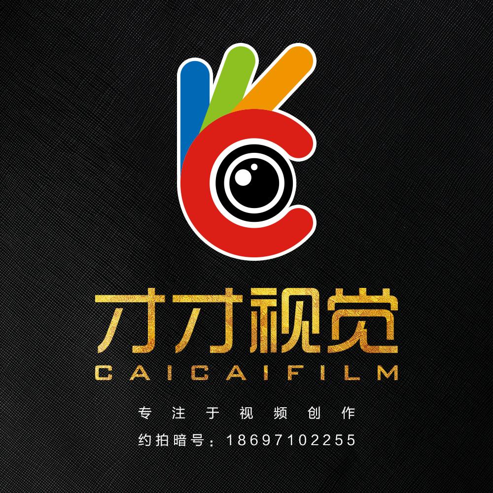 青海才才视觉文化传媒有限公司logo品牌形象设计图片