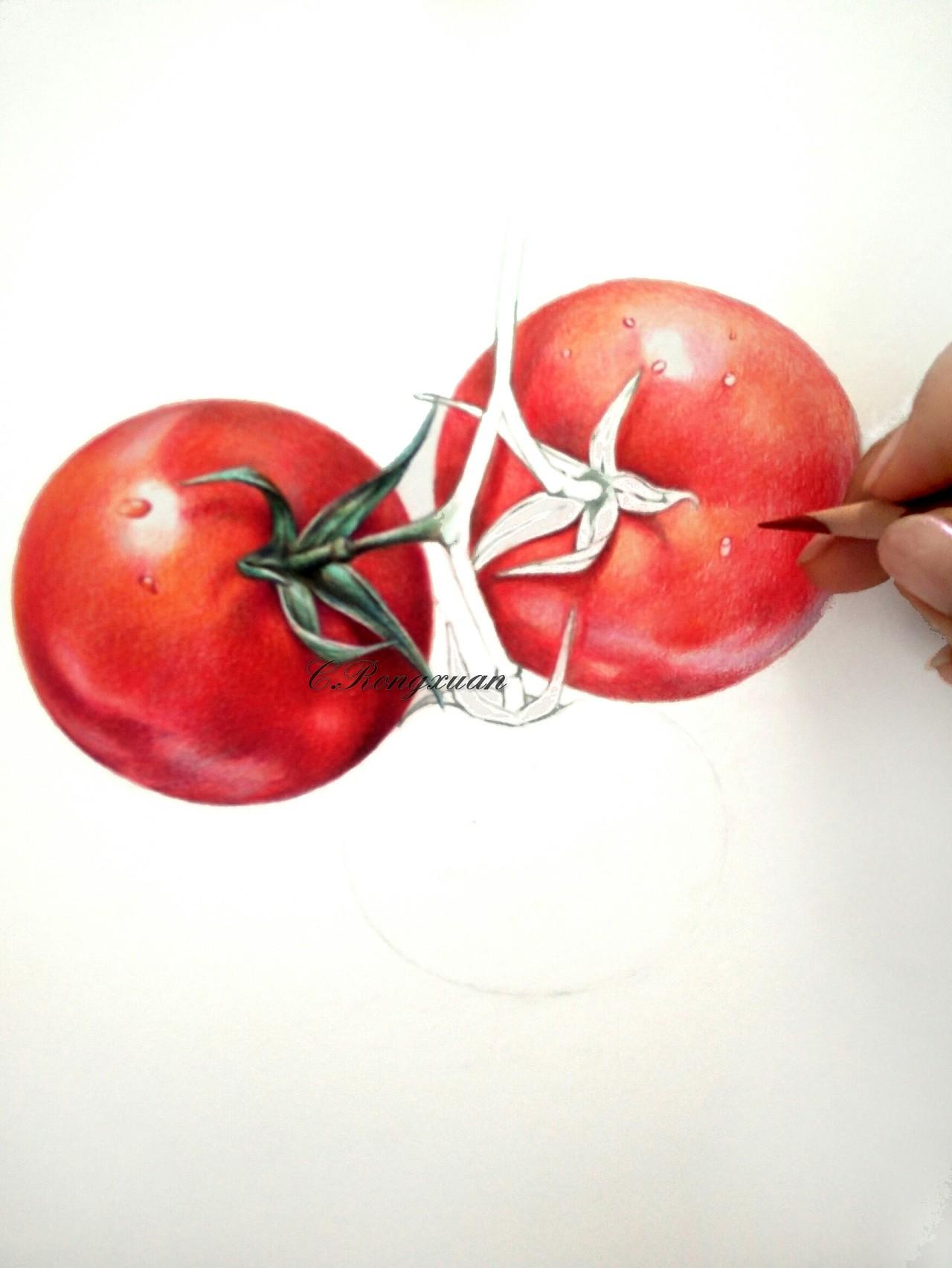 【溶萱手绘——彩铅蔬菜】tomato(ω)