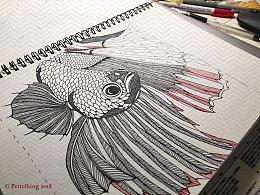 Fish 100
