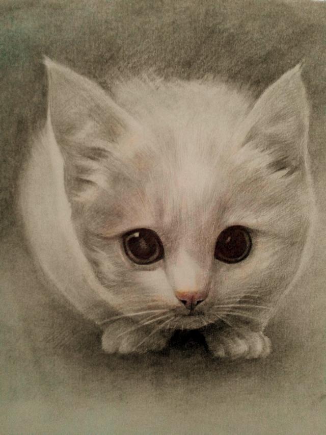 手绘 彩铅 素描|绘画习作|插画|玖珊儿