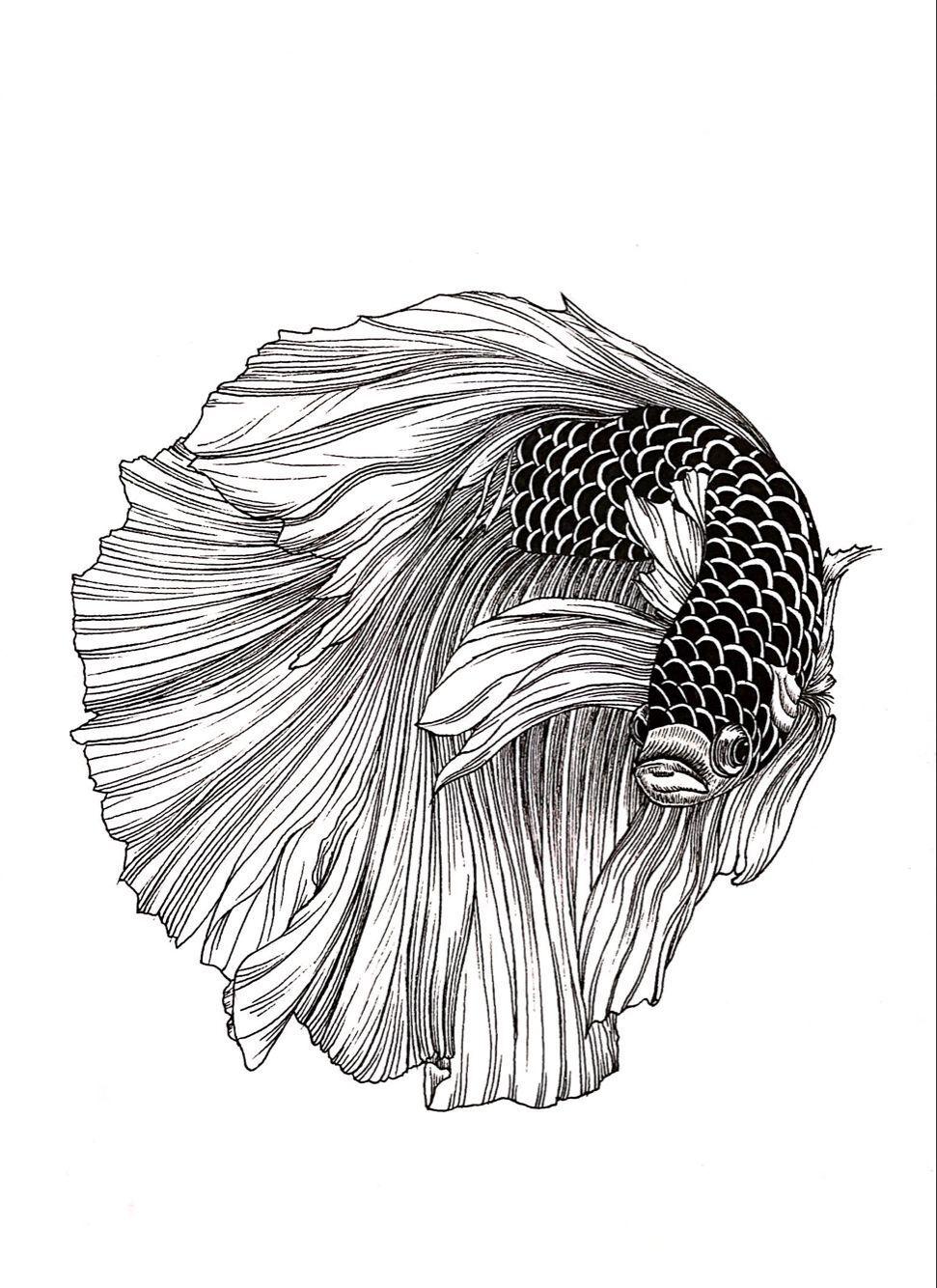 黑白动物绘|纯艺术|钢笔画|地主家也没有余粮 - 原创