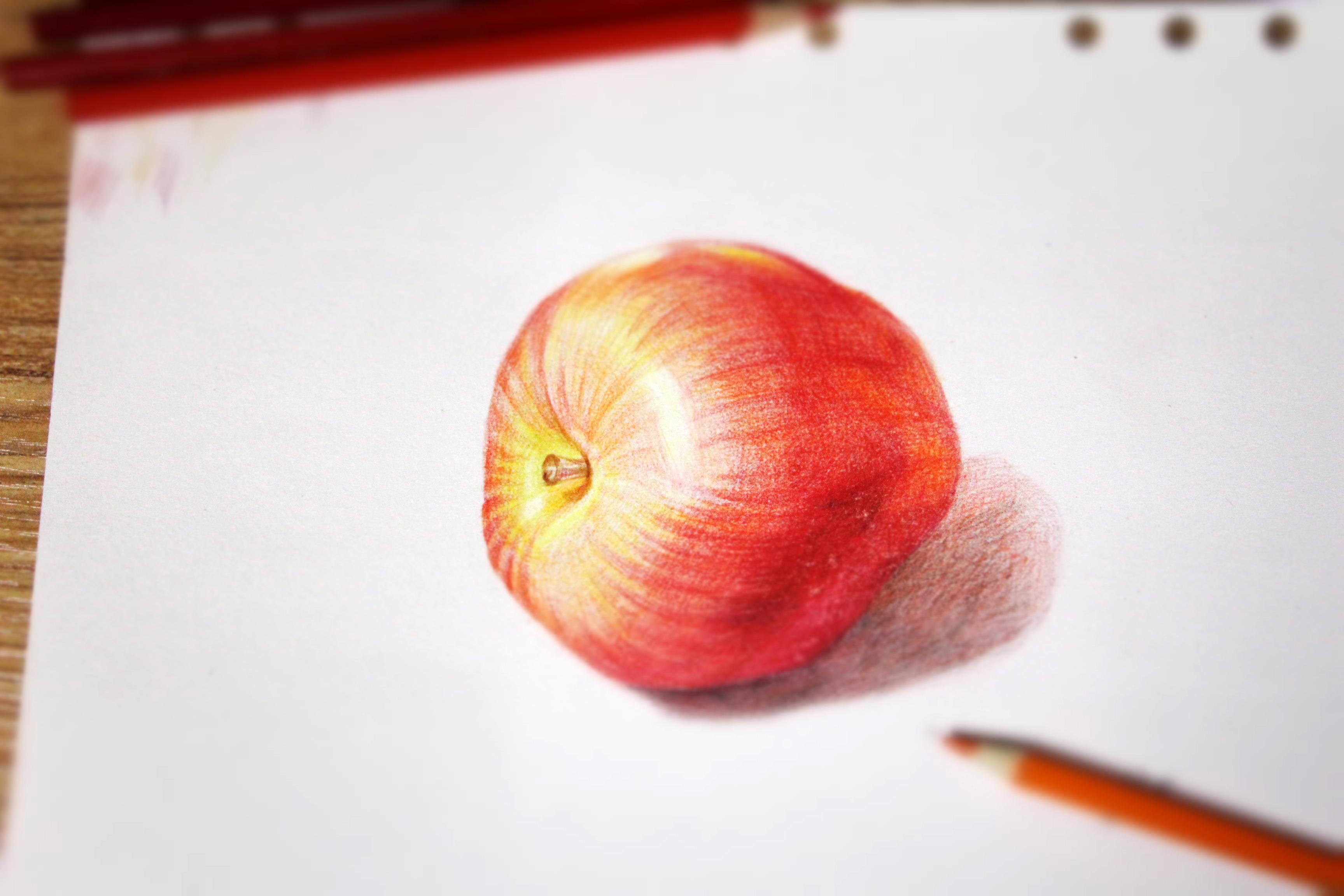 彩铅,手绘
