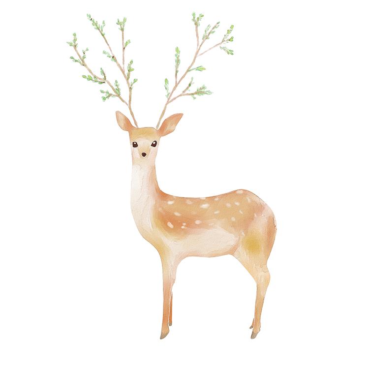 森系小鹿—临摹水彩风
