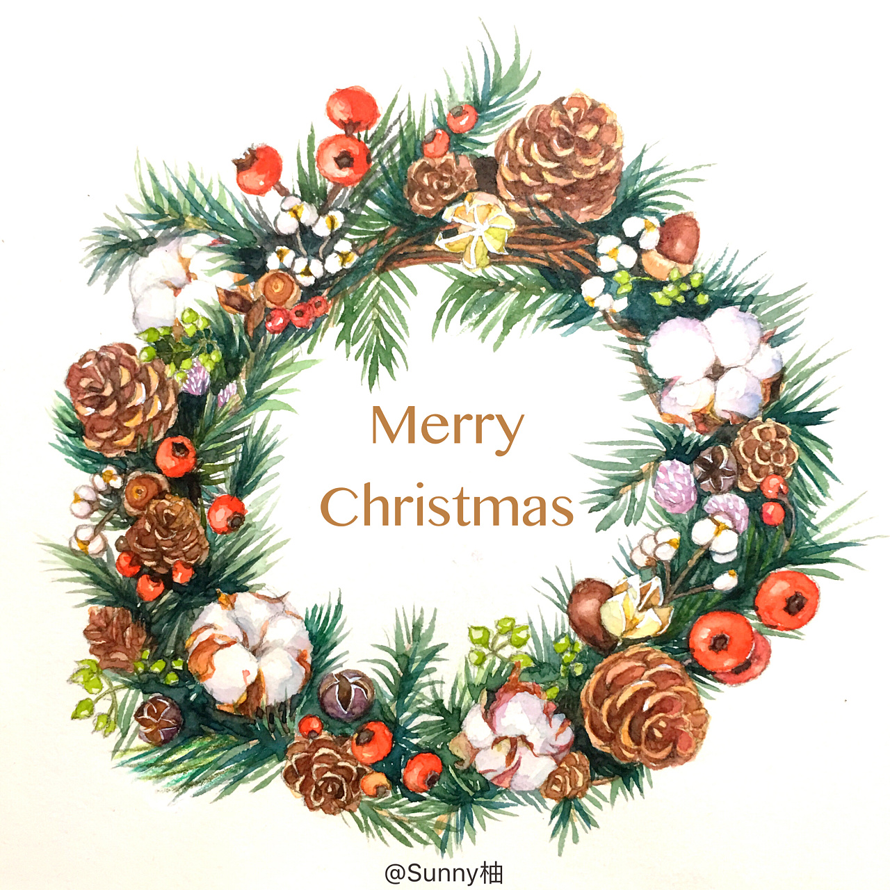 水彩手绘圣诞花环,merry christmas!
