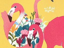 《花花肠子》火烈鸟插画习作