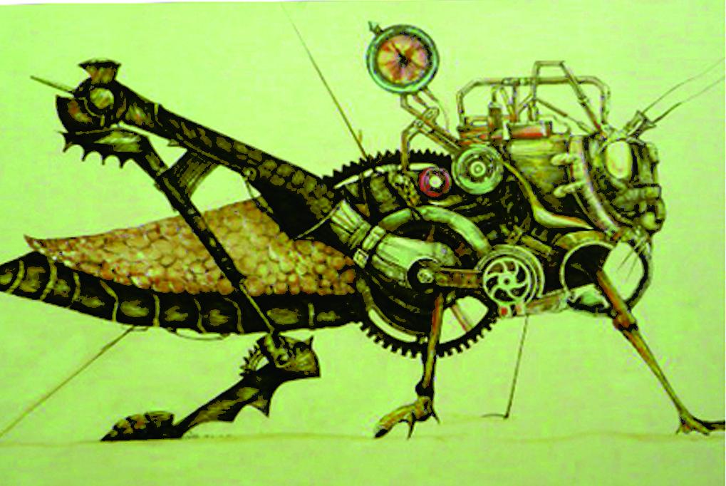 昆虫大全手绘图片