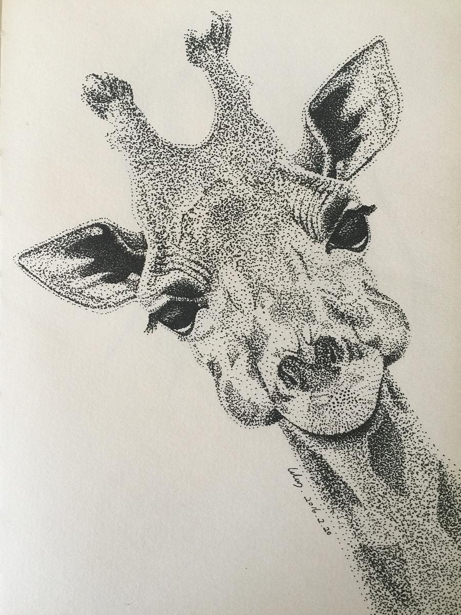 针管笔点画:长颈鹿
