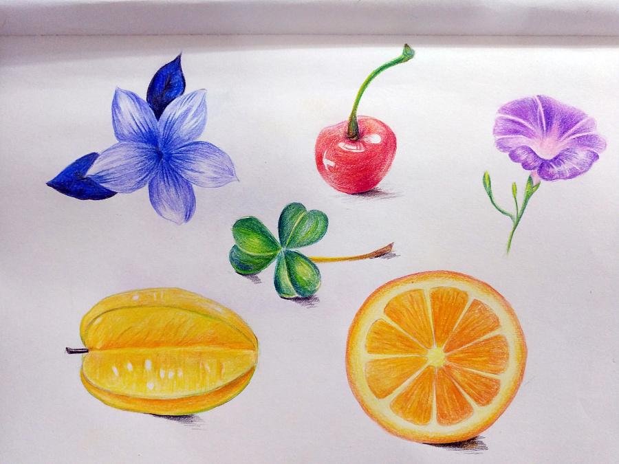 原创作品:彩铅手绘练习