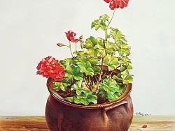 彩铅写实装饰画盆栽花