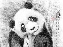 小城市的大熊猫