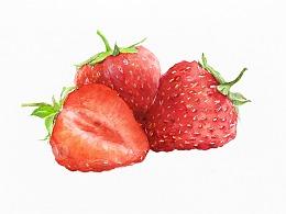 水彩草莓教程 | 留白胶的使用技法
