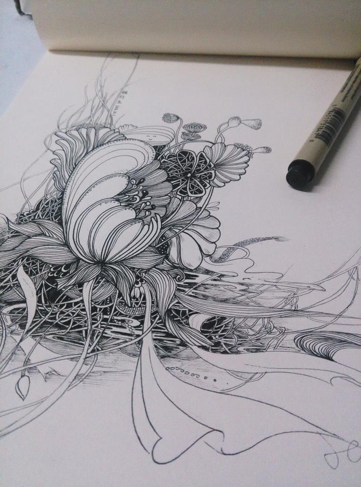 黑白线体手绘插画练习