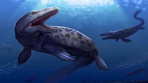 壁纸 动物 海洋动物 鲸鱼 桌面 500_280