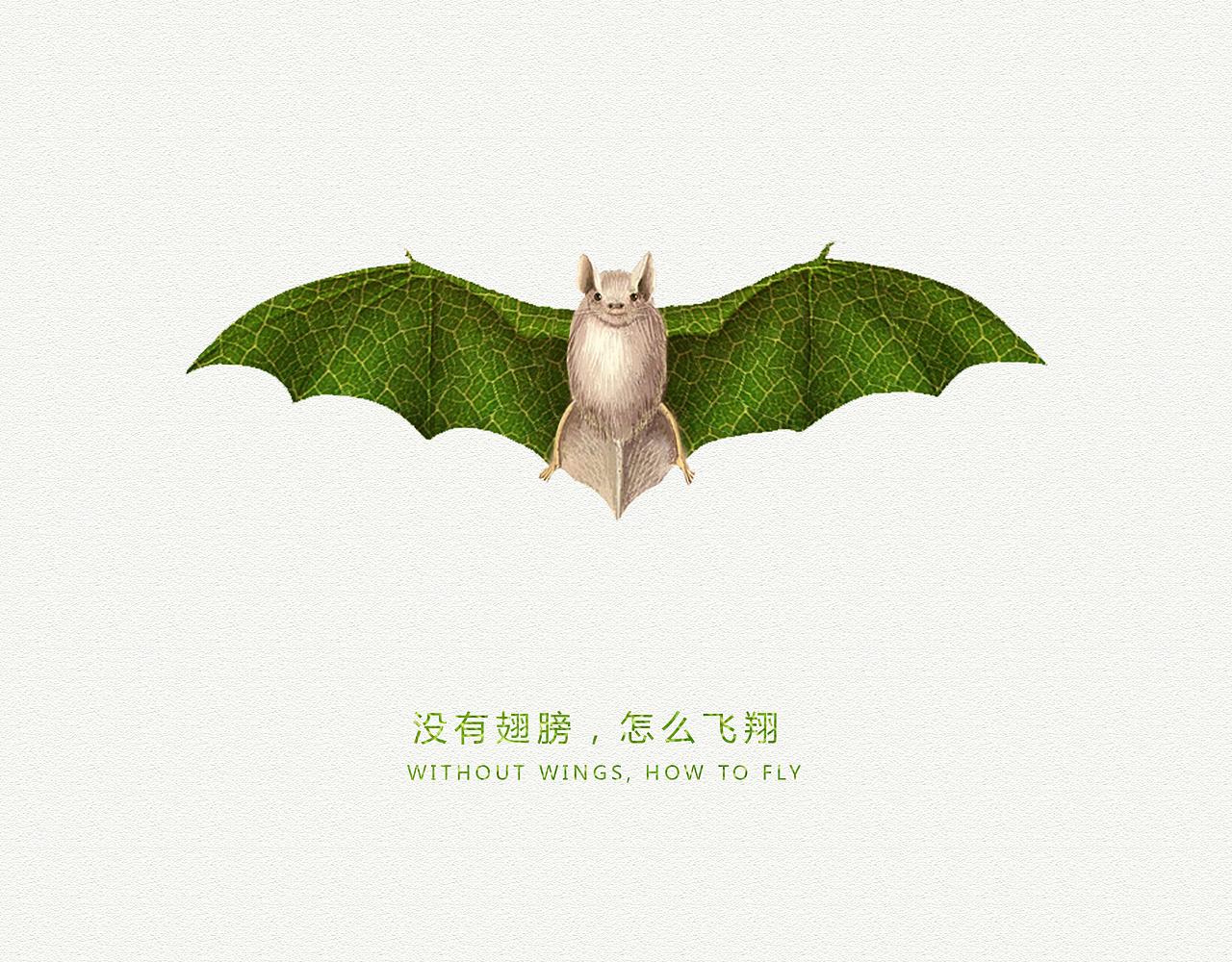 保护动物广告设计图片