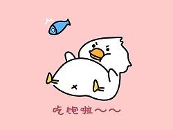 微信表情包--啵啵鸭
