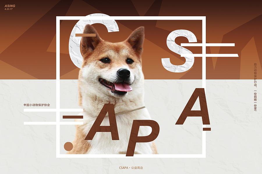 中国小动物协会公益明信片设计 - 谢佳昕 asing|海报