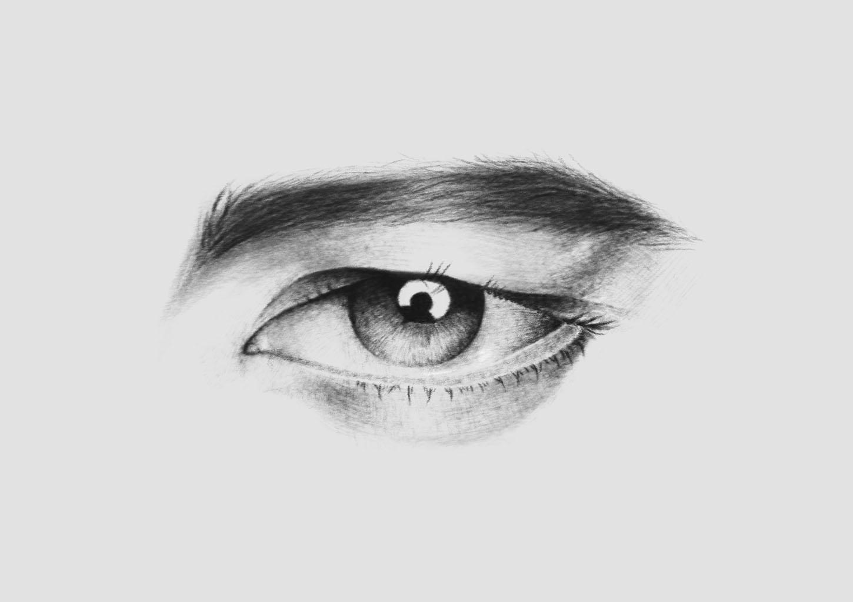 眉毛素描素材-素描眼图片