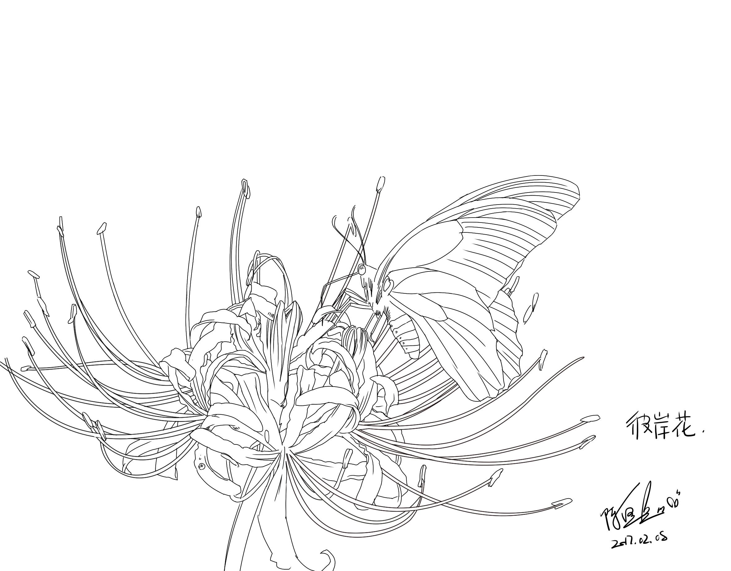绘晨手绘 室外 植物手绘效果图 景观单体手绘效果图 景观植物线稿 绘