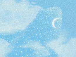 鲸鲨的繁星