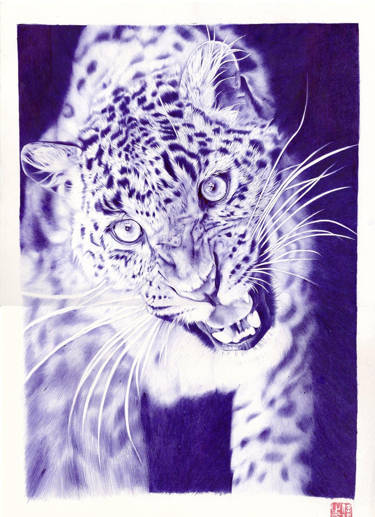 圆珠笔画 可爱的动物们