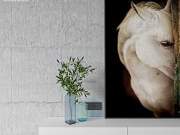 【菲拉作品】两间小公寓合二为一,乌克兰风格设计改造