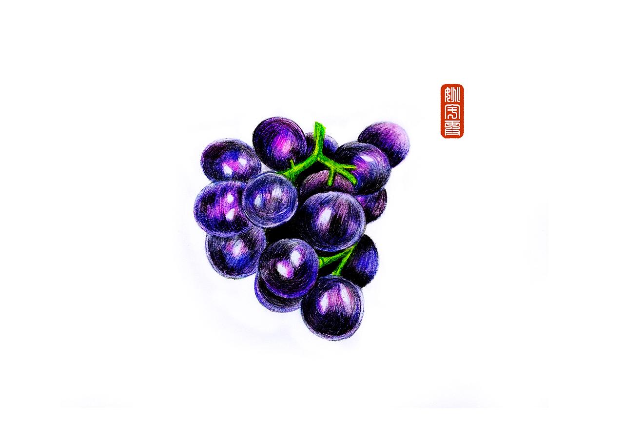 一窜紫葡萄
