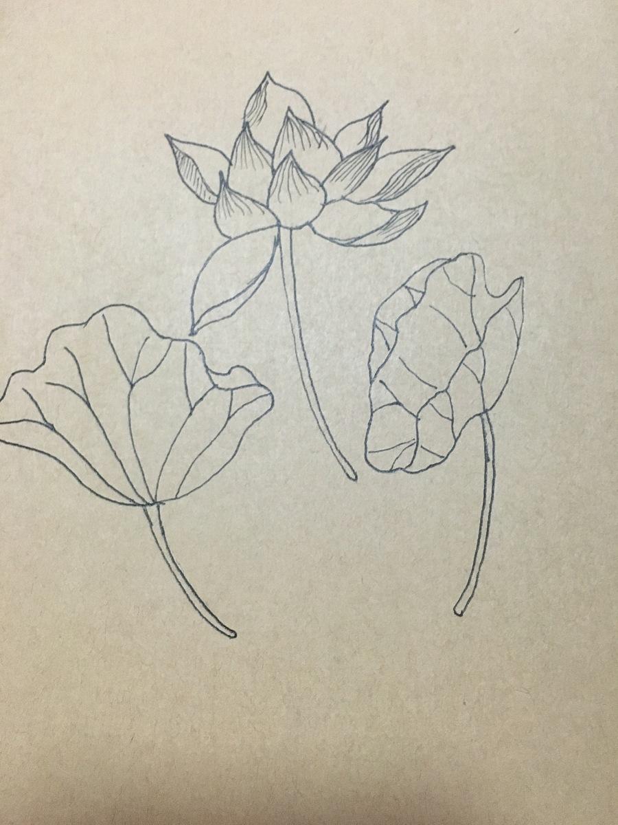 一些小手绘|绘画习作|插画|zx影子是时光的心 - 原创