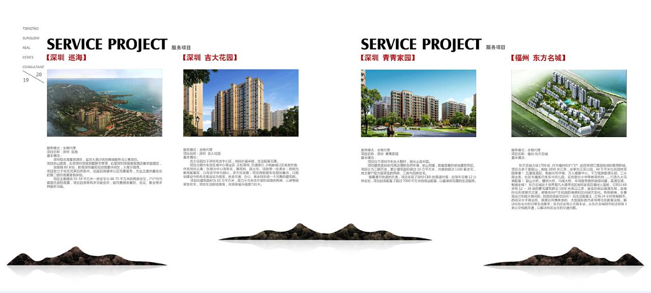 专业的画册设计公司济南,这些是大翼图片