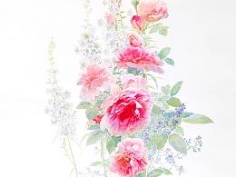 我喜欢驻足在晨曦中的玫瑰花前静待花开