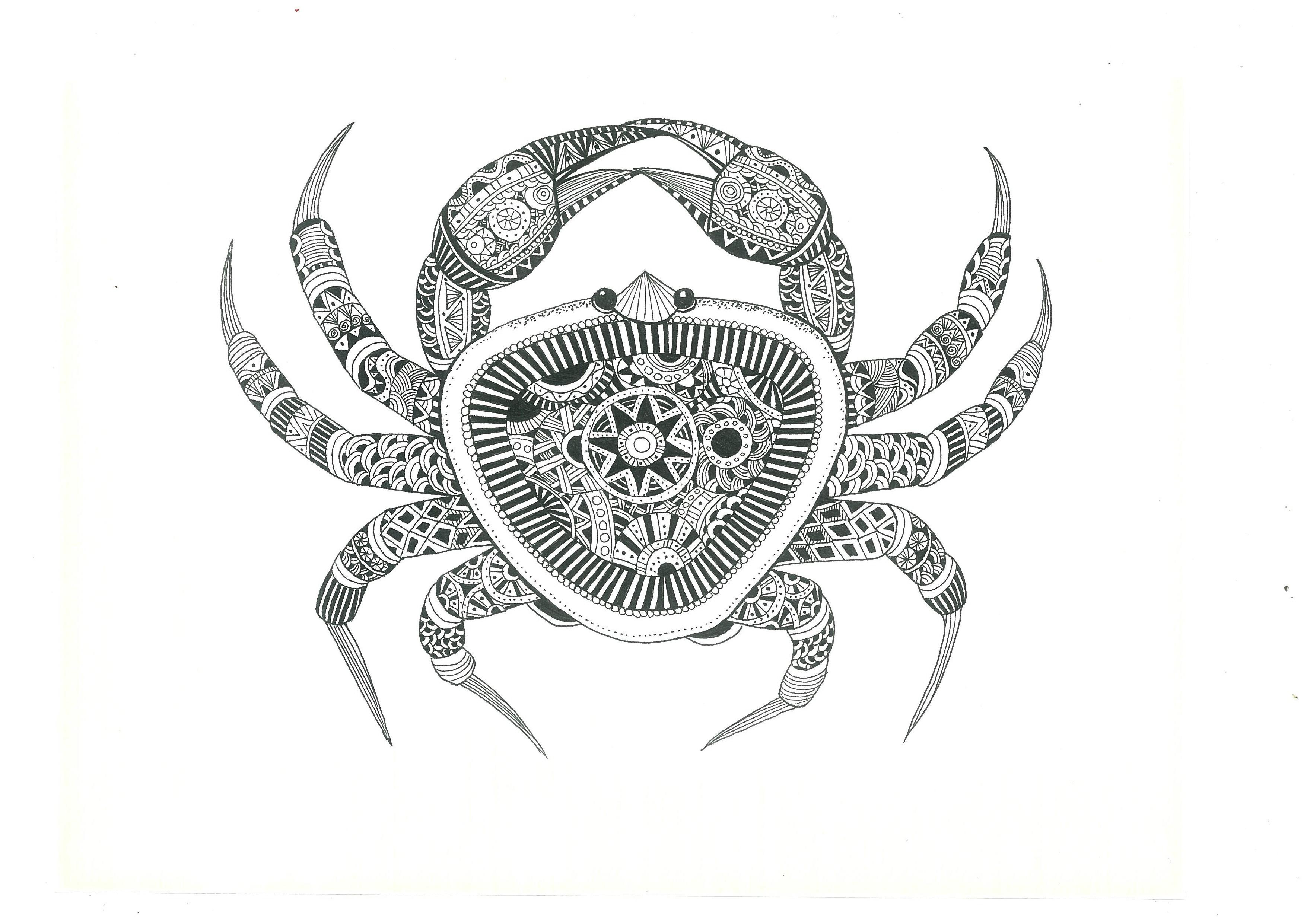 以手绘的形式来表现海鲜的唯美形态,整体用