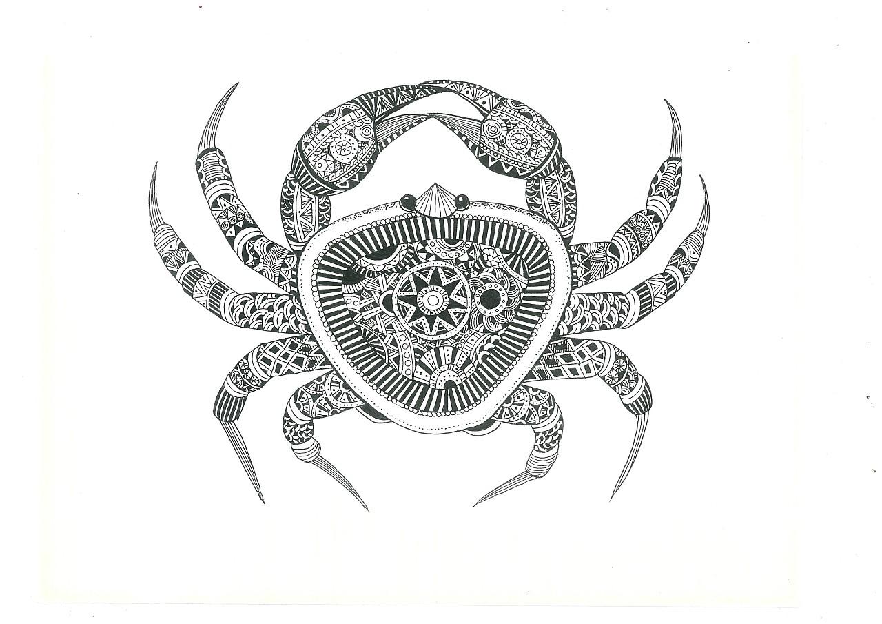 以手绘的形式来表现海鲜的唯美形态,整体用黑白图片