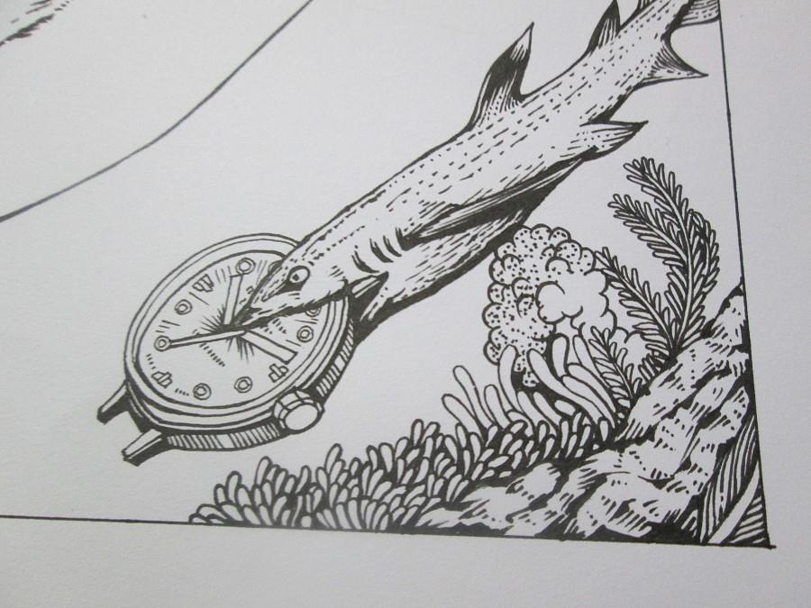 鲸鲨 简笔画