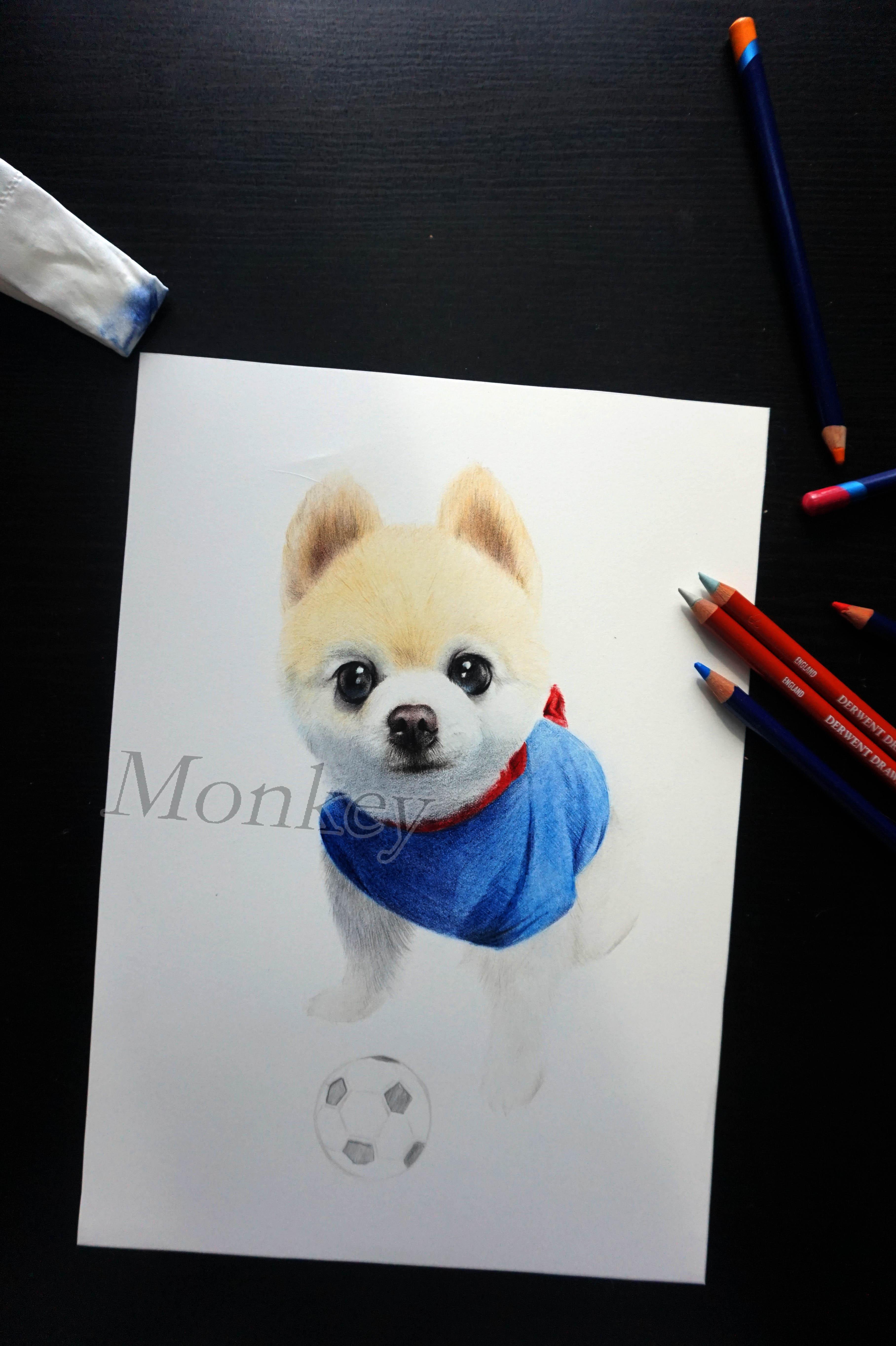 俊介犬彩铅手绘