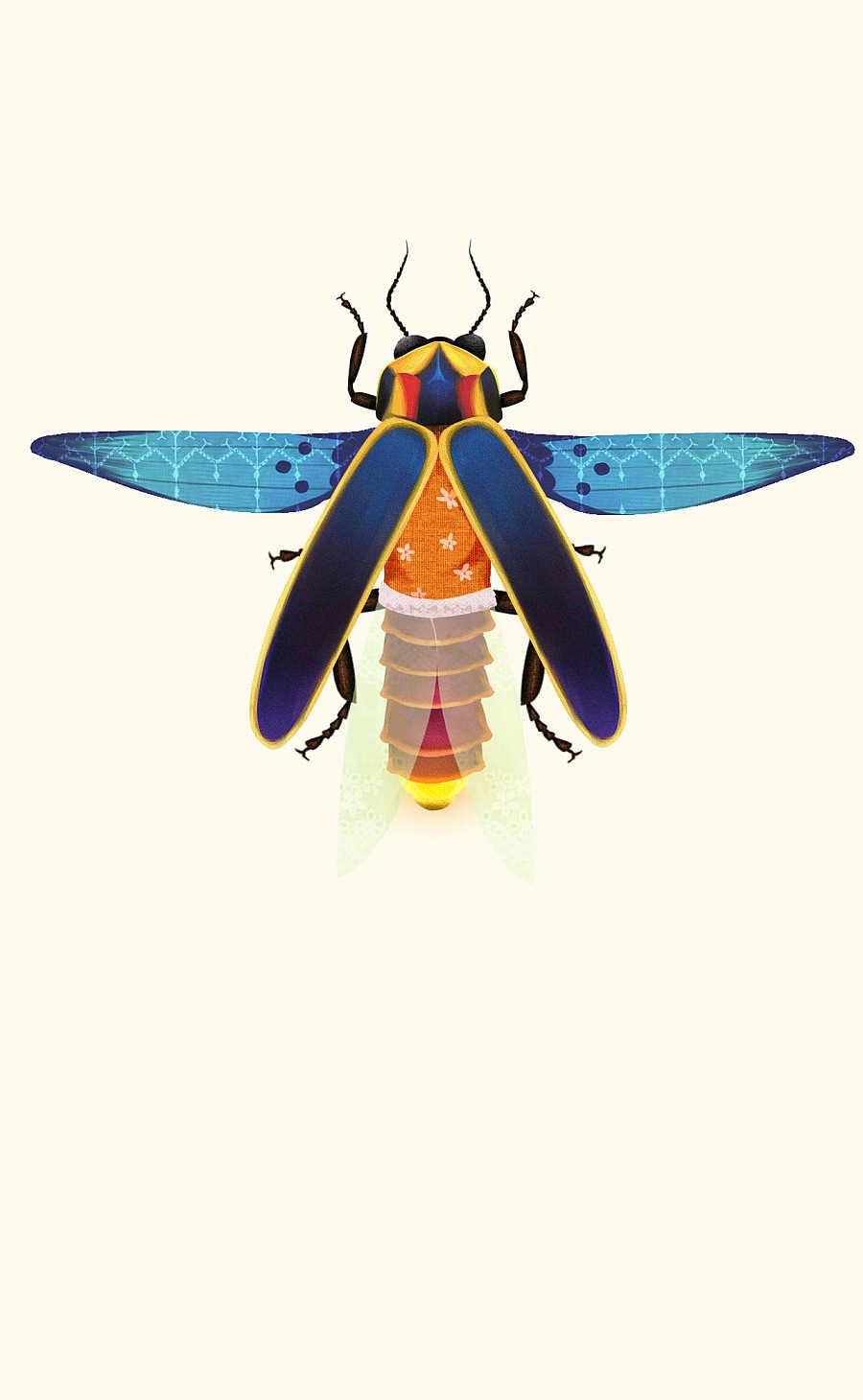 萤火虫设计插画