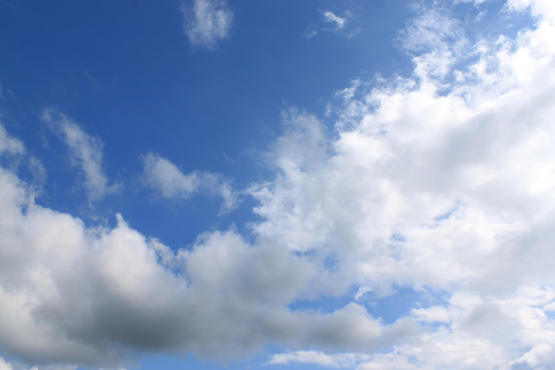 云朵我的楼兰歌词简谱