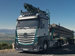 Long Timber Transport 长木运输车
