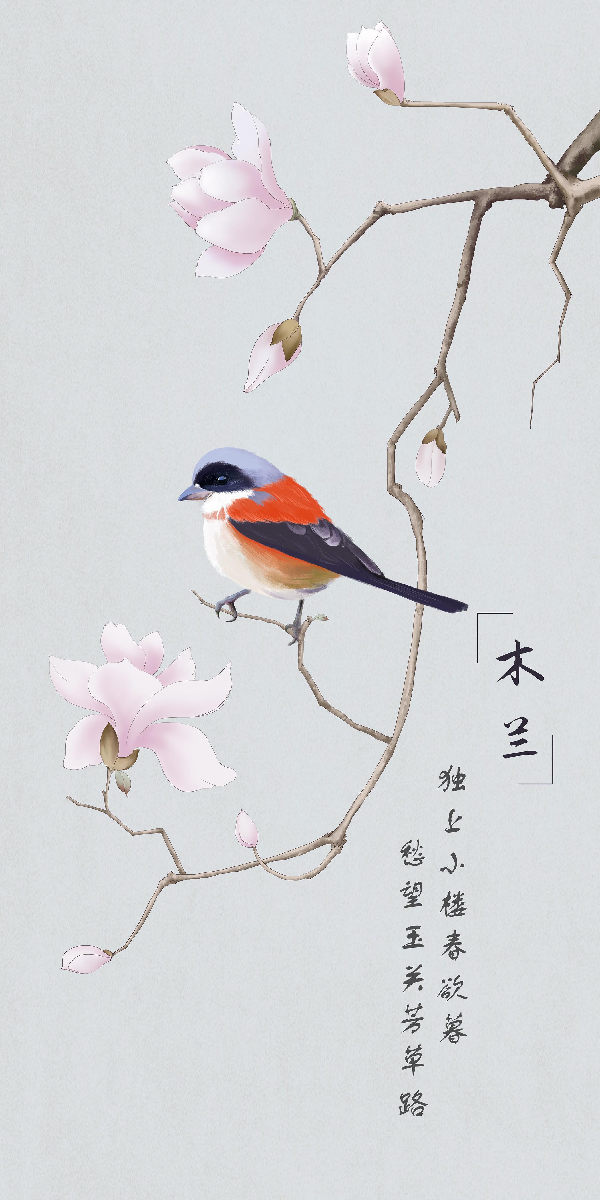 标签:手绘板绘插画木兰花鸟 作品信息