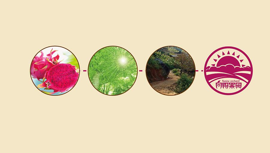 【农产品创意】向阳果园-火龙果品牌设计