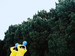 蓝 | 黄