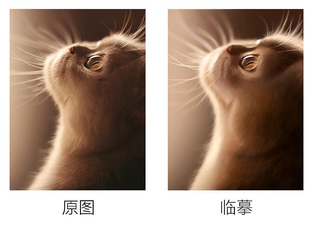 手绘练习-动物