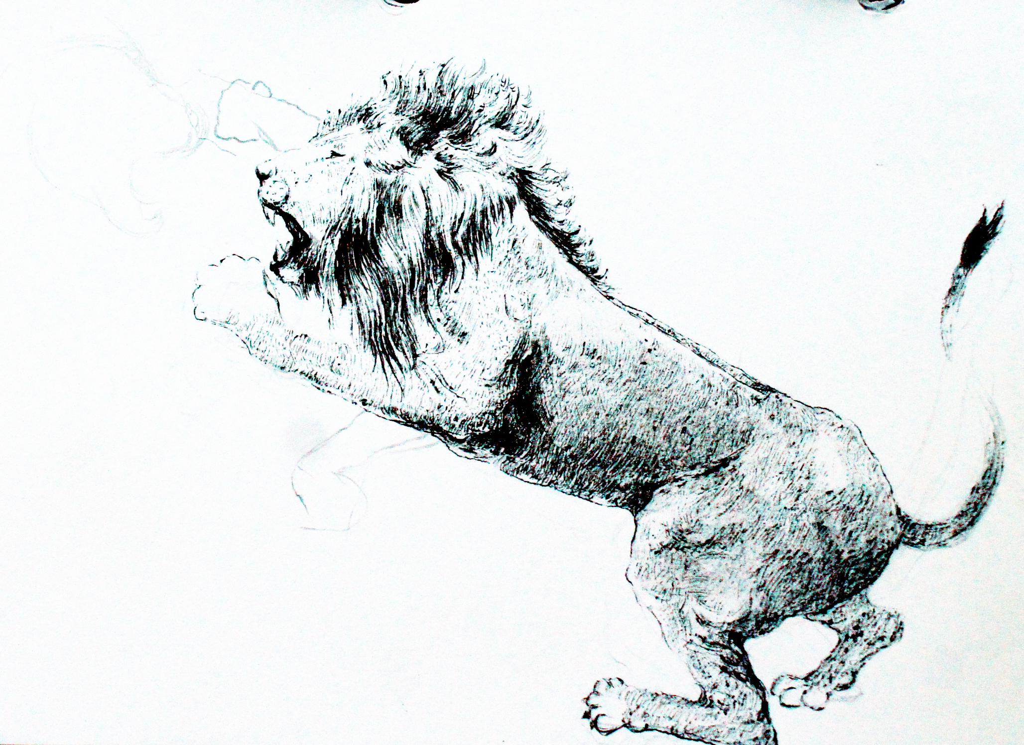 钢笔画动物