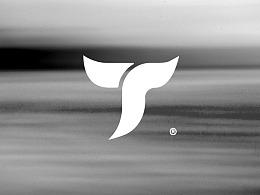 Topciy logo design