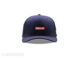 #适者生存 弯檐棒球帽