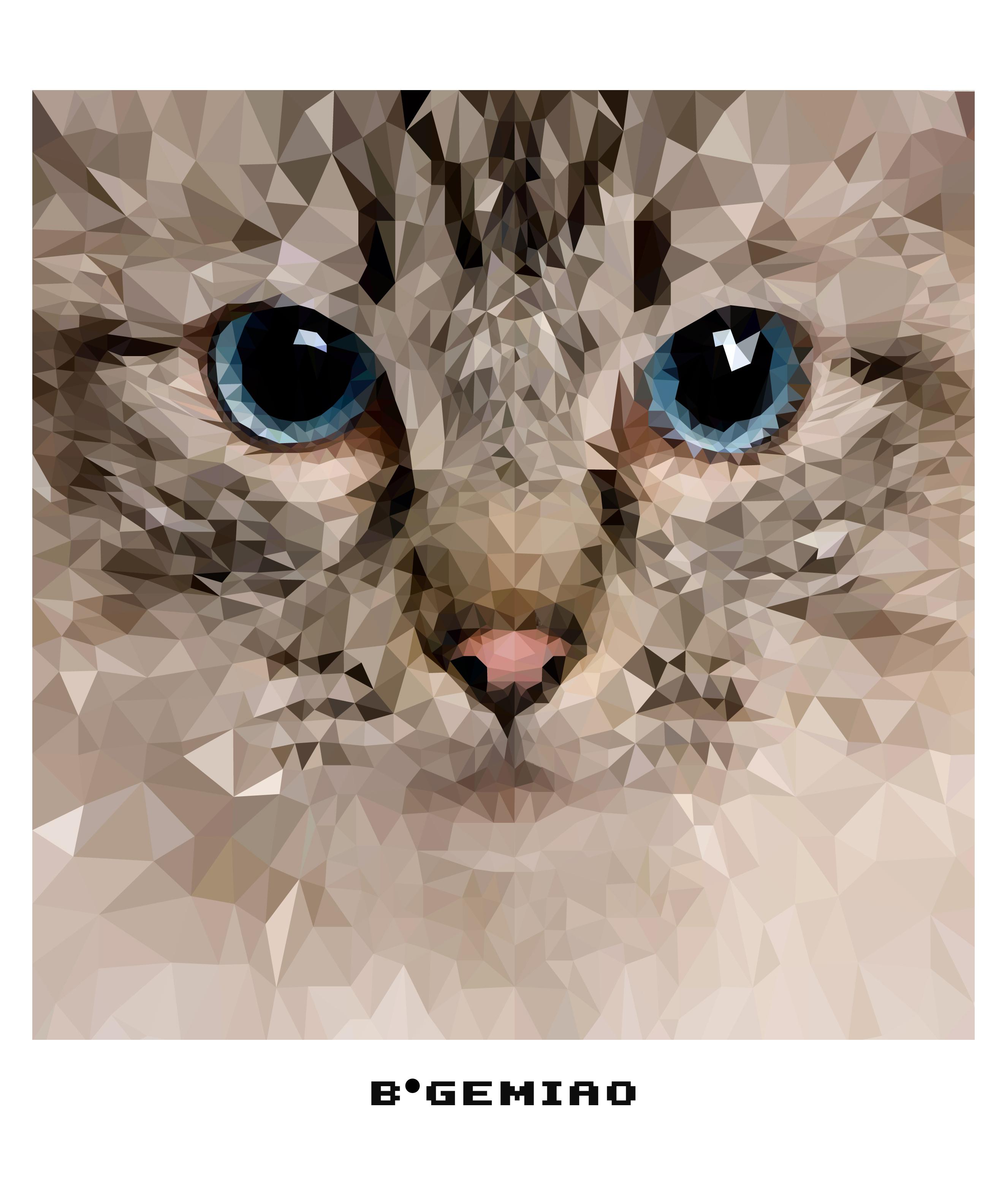 手绘图案钻石猫
