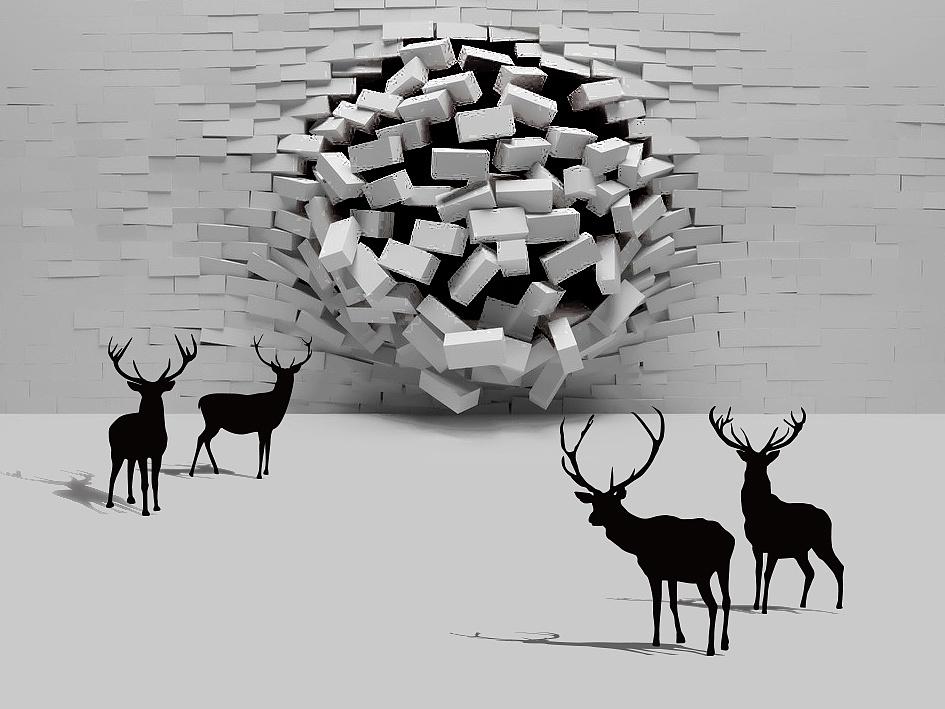语鹿沟通视觉形象设计 平面 品牌 十设创意 - 原创图片