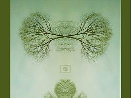 树 · 姿态